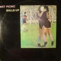 80's Bands That Time Forgot  (Spotlight) - WET PICNIC