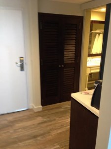 Entry with closet