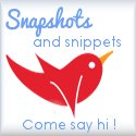 Snapshots and Snippets