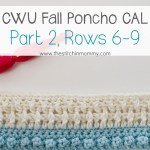 Crochet With Us Fall Poncho CAL – Part 2