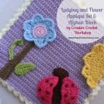 Ladybug and Flower Applique Set & Afghan Block