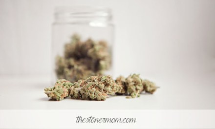 Strain Reviews: Moonshine Haze, a clear headed winner