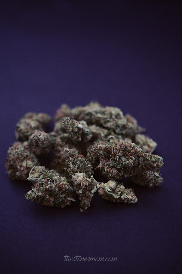 Lavender05