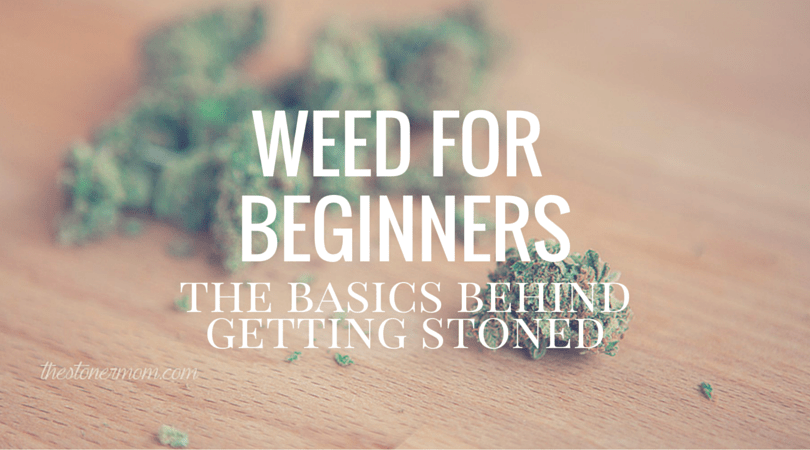Weed for Beginners | The Basics Behind Getting Stoned