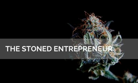 The Stoned Entrepreneur