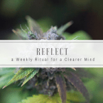 Reflect   A Weekly Ritual for a Clearer Mind