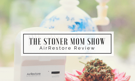 AirRestore Review | Air Naturalizer System Review by The Stoner Mom