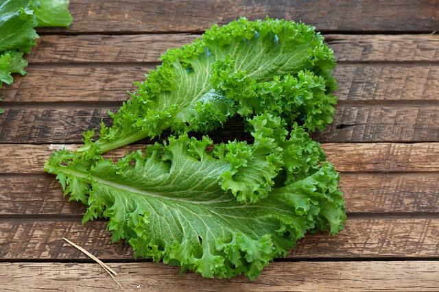 Mustard Greens Substitutes