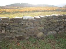 Rebuilt historic dry stone field wall