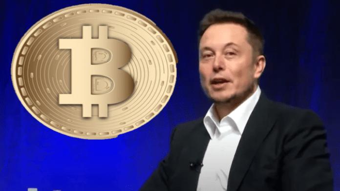 Tesla Crypto