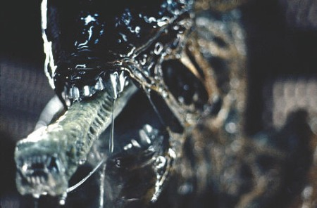 1979_alien_give_us_a_kiss