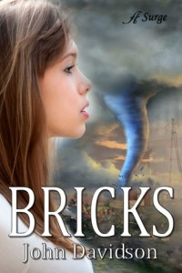 Bricks by John Davidson