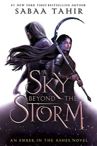 A Sky Beyond the Storm by Saaba Tahir