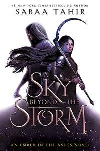 A Sky Beyond the Storm by Saaba Tahir