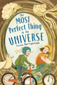The Most Perfect Thing in the Universe by Tricia Springstubb