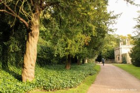 Path to Studley Hall
