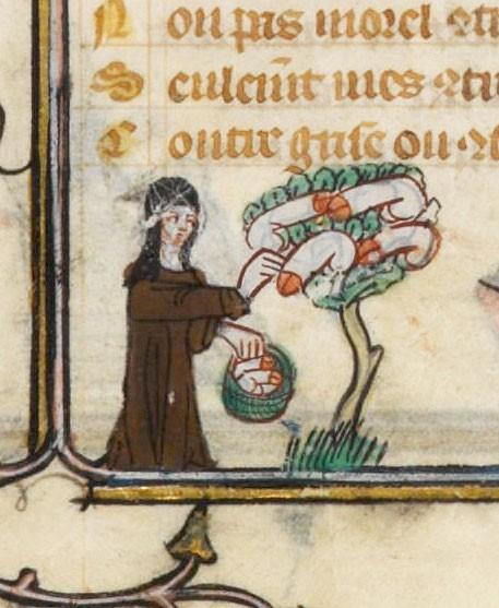 Some very strange margin art from a medieval manuscript