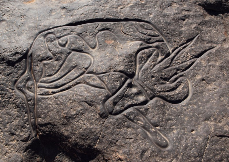 A Stone-Age Amazigh rock carving in Libya, perhaps as old as 9,000 BCE