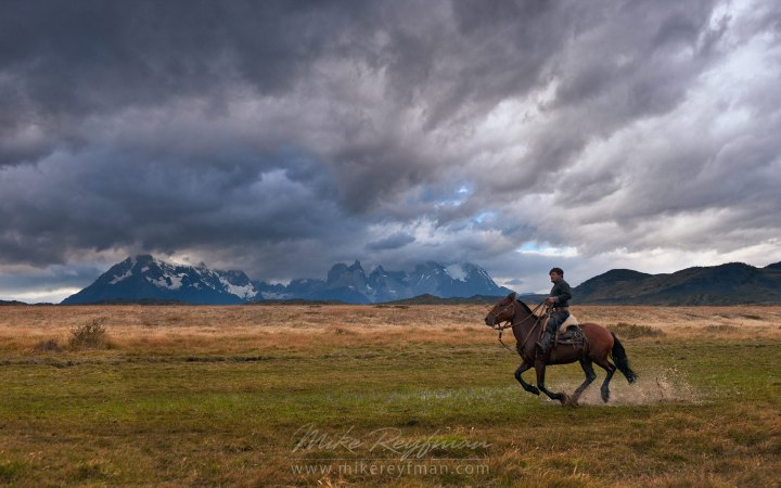 With the domestication of the horse, steppe life would never be the same (photo copyright Mike Reyfman)