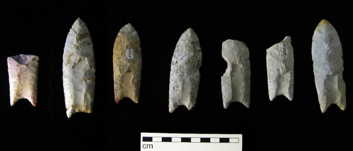 Native American history: Spearpoints of the Clovis culture, with distinctive fluting along the sides.