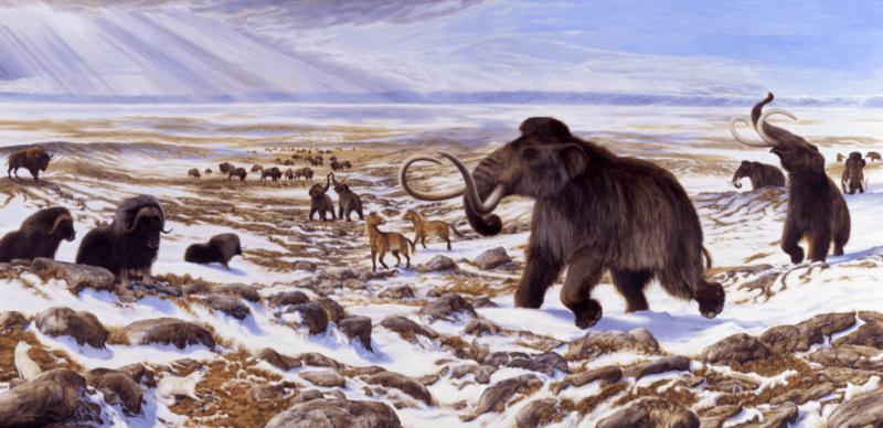 Native American history: Megafauna of Beringia