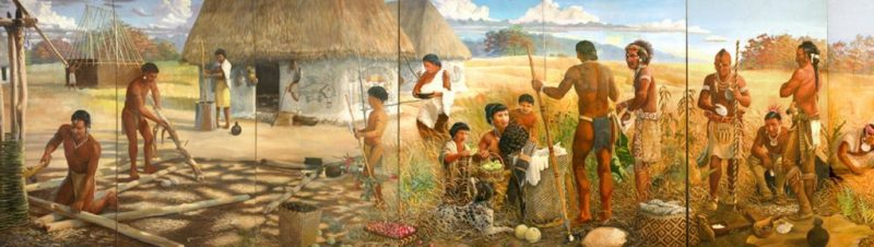 Native American history: People of ancient Wickliffe, Kentucky.