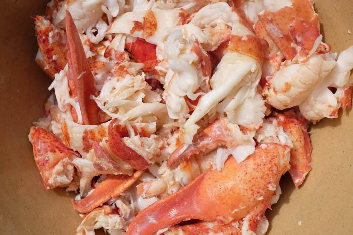 Lobster Roll Recipe 8