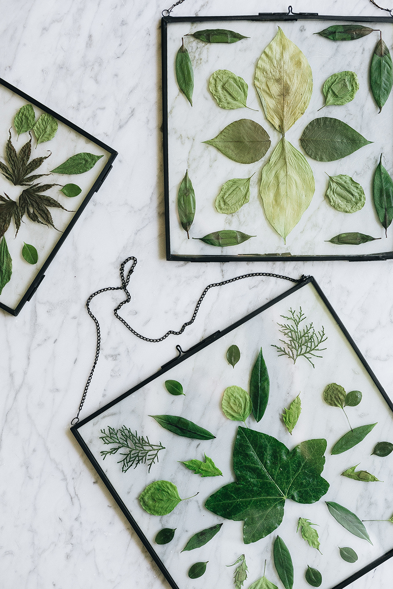 DIY Pressed Flower Stained Glass Wall Hanging