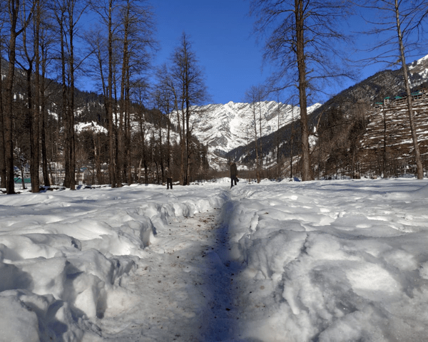 Trek to Solang Valley: Into the Hills Part 2