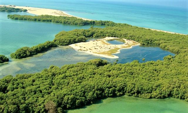 Bu Tinah Island