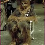 CHEWBACCA RULES HIMSELF OUT OF STAR WARS 7