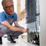 TED DANSON FIXES FRIDGES GETS STAR