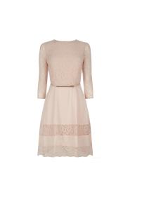Oasis Lace Stripe Skater Dress