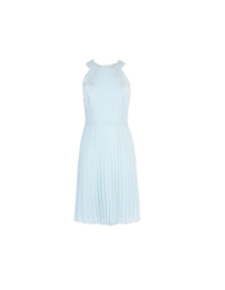 Coast Sadie Pleated Dress