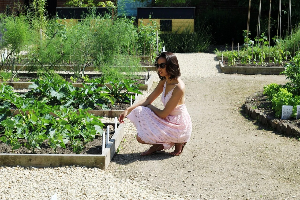 at herb garden - woman in pink dress - The Style of Laura Jane