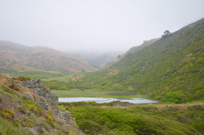 Tennessee Valley Trail in Marin County
