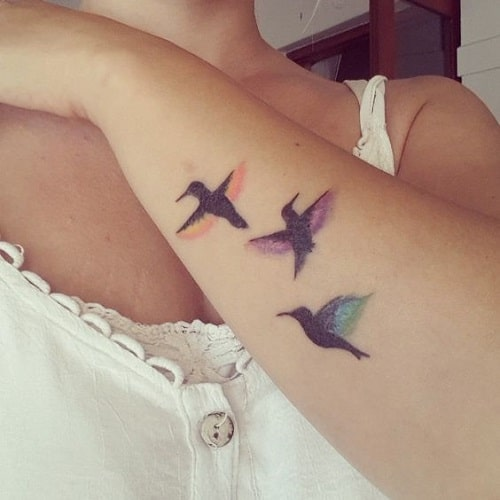 Colorful Birds Tattoos on Arm