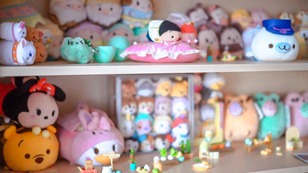 kasey ma of the stylewright kawaii plush collection on shelves