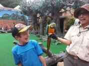 Ocean Park birds...