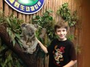 Kiddo loved visiting with the koala as well.
