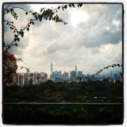 View from HK Public library
