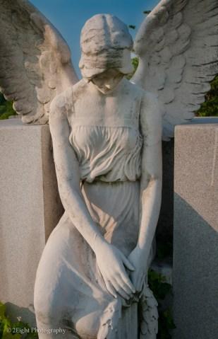 An Angel Amoung Us