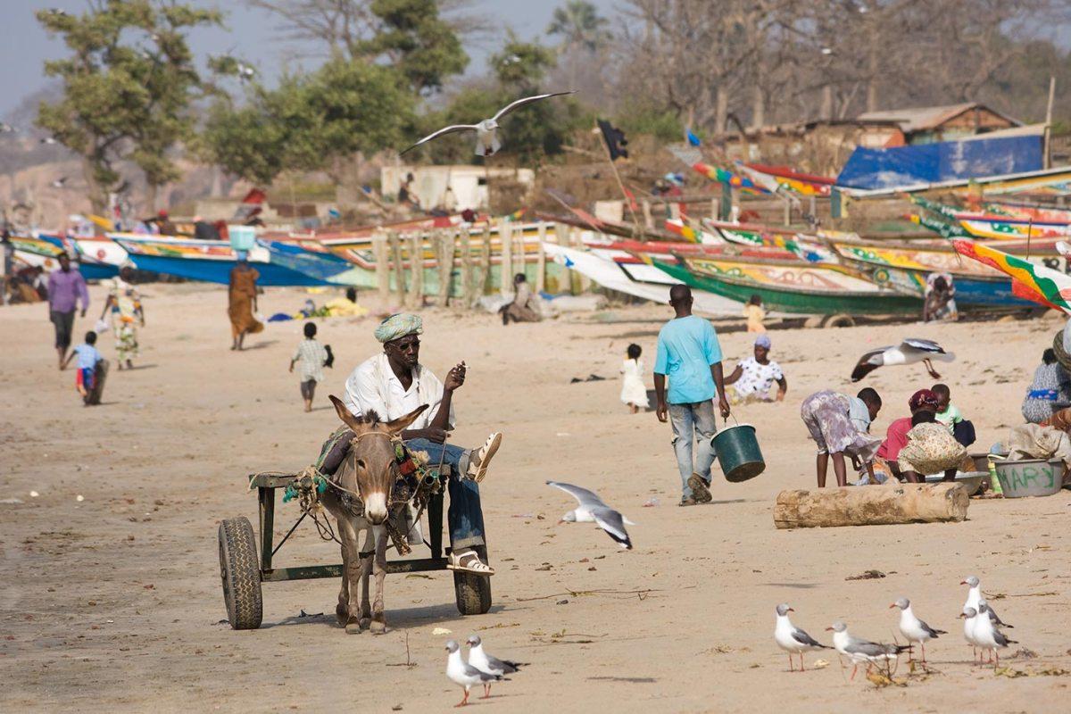 https://i1.wp.com/thesubmarine.it/wp-content/uploads/2017/01/Gambia_beach.jpg?fit=1200%2C800&ssl=1