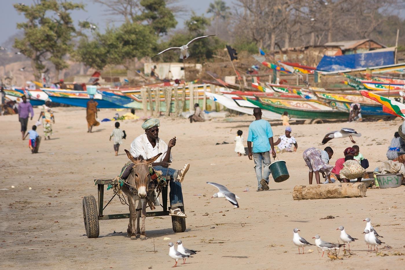 Gambia, che cos'è successo nel più piccolo paese dell'Africa in questi giorni?