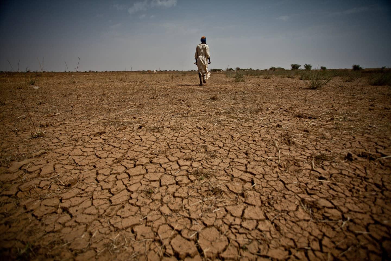 Tutti i migranti dell'Africa subsahariana sono rifugiati climatici