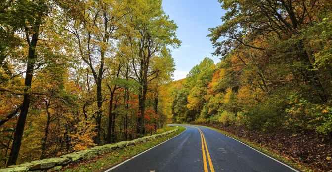 asphalt autumn beauty colorful