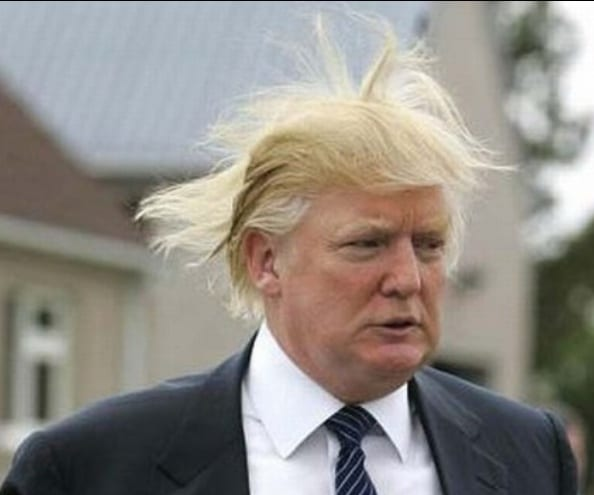 "Republican presidential candidate, Donald Trump throws caution to the wind by displaying the Donald ""Duck"" Trump comb-over hairstyle."