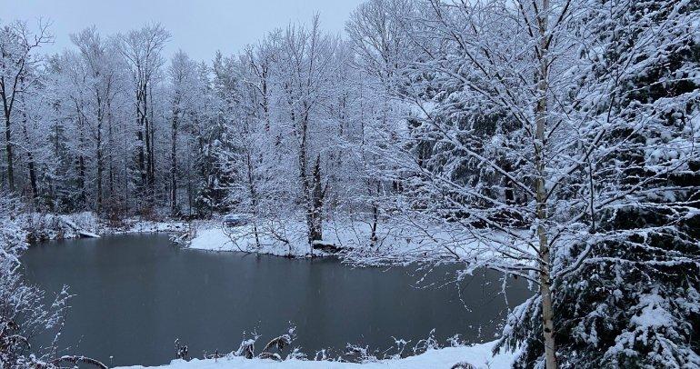 Snowfall of Light Language