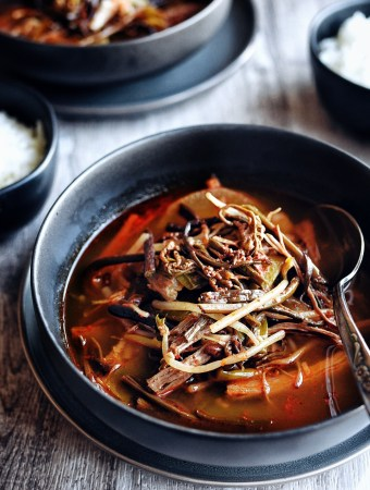 close up of yukgaejang in dark bowl with spoon