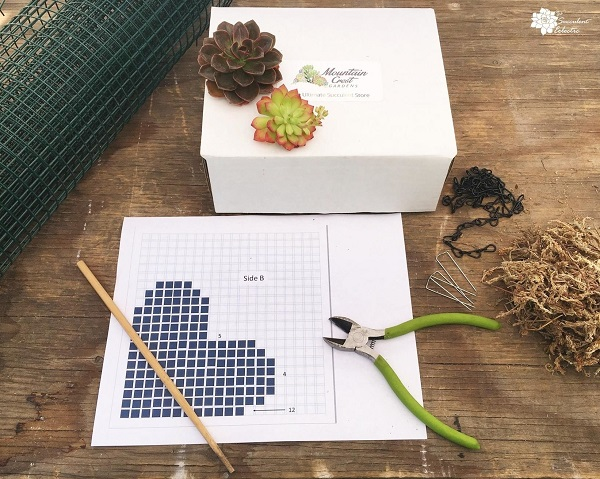 Supplies for DIY succulent topiary heart